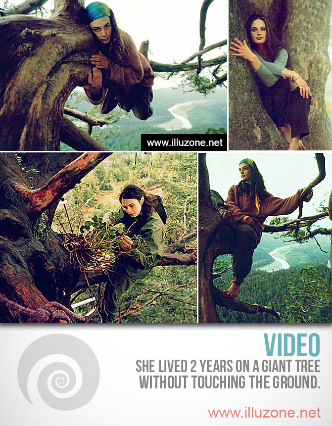 VIDEO | Adventures In Treesitting | Can't believe she lived 2 years on a giant tree without touching the ground.