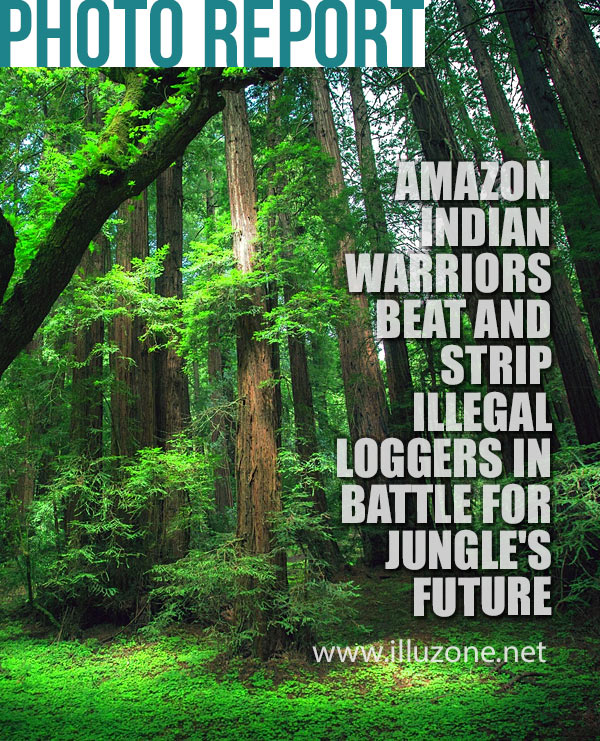PHOTO REPORT | Amazon indian warriors beat and strip illegal loggers in battle for jungle's future