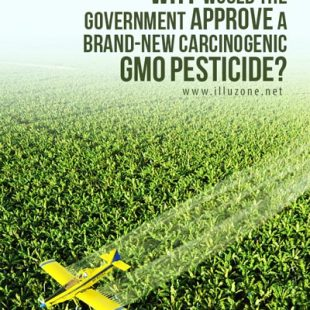 Government Approve GMO Pesticide, monsanto