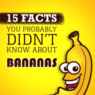 15 facts about bananas, infographic
