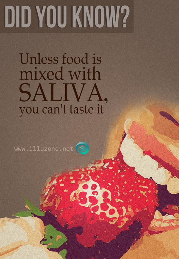 DID YOU KNOW | Saliva fact