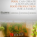 Garden Pool Turn Into Sustainable Food Production For Family