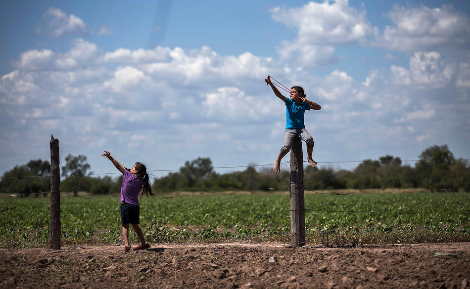In this May 31, 2013 photo, girls use slingshots next to a biotech soybean plantation in Avia Terai, in Chaco province, Argentina. The country's entire soybean crop and nearly all its corn and cotton have become genetically modified in the 17 years since St. Louis-based Monsanto Company promised huge yields with fewer pesticides using its patented seeds and chemicals. Instead, the agriculture ministry says agrochemical spraying has increased ninefold, from 9 million gallons in 1990 to 84 million gallons today. (AP Photo/Natacha Pisarenko)