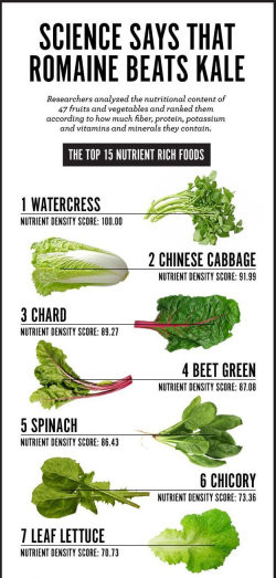 Romaine-vs-Kale-fruits-and-vegetable-nutritional-content---ft