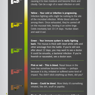 Colour of your snot, health, Cleveland Clinic, infographic
