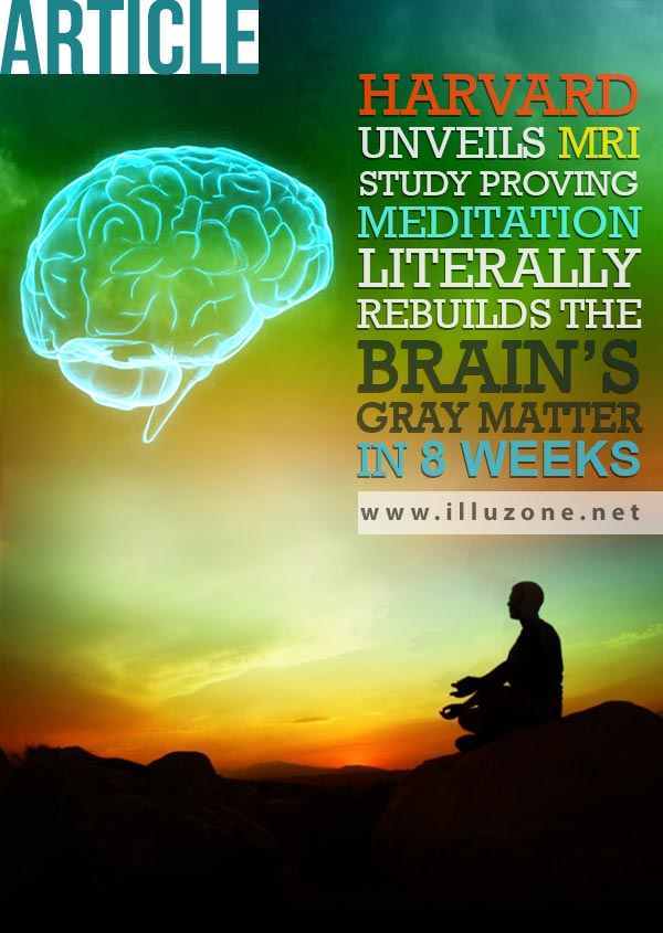 ARTICLE | Harvard unveils MRI Study Proving Meditation Literally Rebuilds The Brain's Gray Matter In 8 Weeks