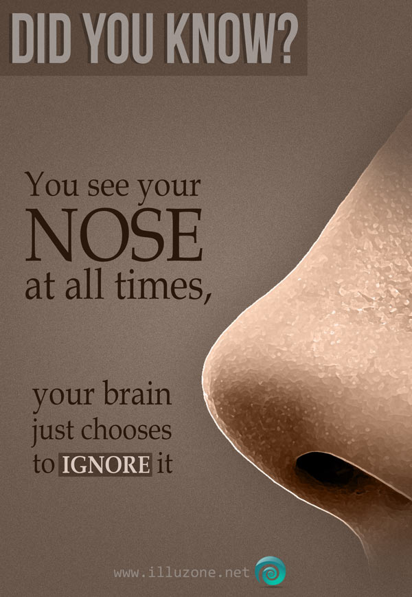 DID YOU KNOW | Nose fact.