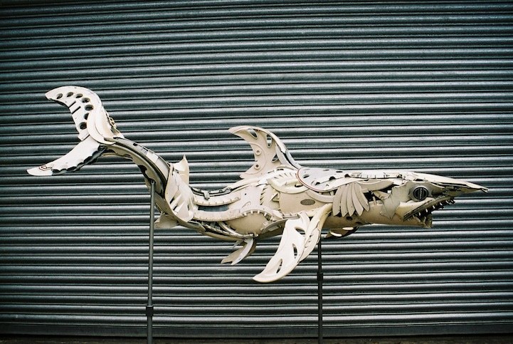 Discarded Hubcaps shark 8
