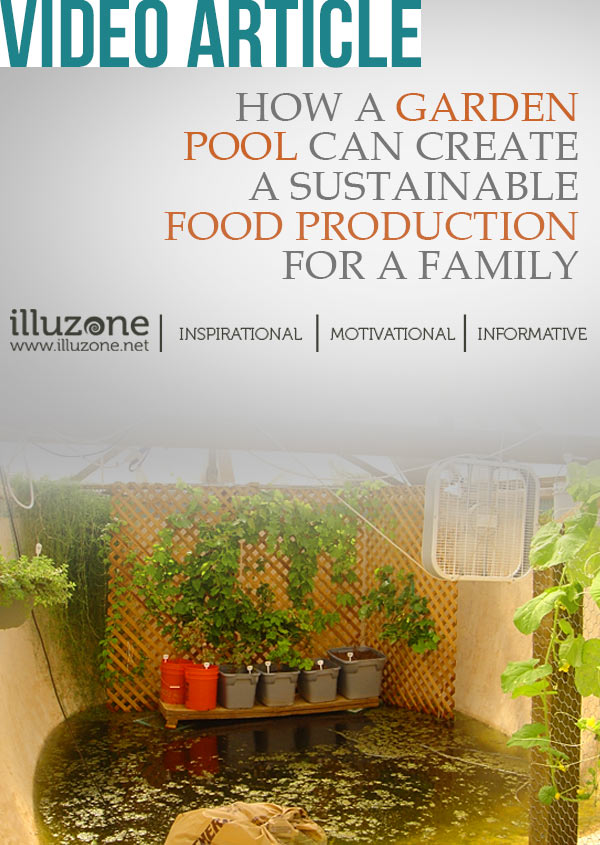 ARTICLE | How a garden pool can create a sustainable food production for a family