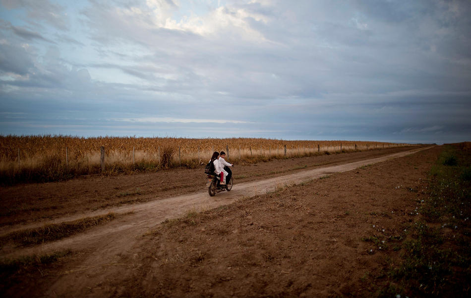 In this May 3, 2013, photo, students ride a motorbike past a field of biotech corn on their way to school in Pozo del Toba, Santiago del Estero province, Argentina. American biotechnology has turned Argentina into a commodities powerhouse, but the chemicals required aren't confined to the fields, they routinely contaminate homes, classrooms and drinking water. Now a growing chorus of doctors and scientists is warning that uncontrolled spraying could be causing the health problems turning up in hospitals across the South American nation. (AP Photo/Natacha Pisarenko)