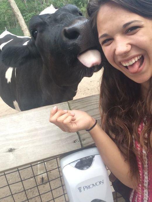 illuzone_Animal_Annoyed_Selfie (12)