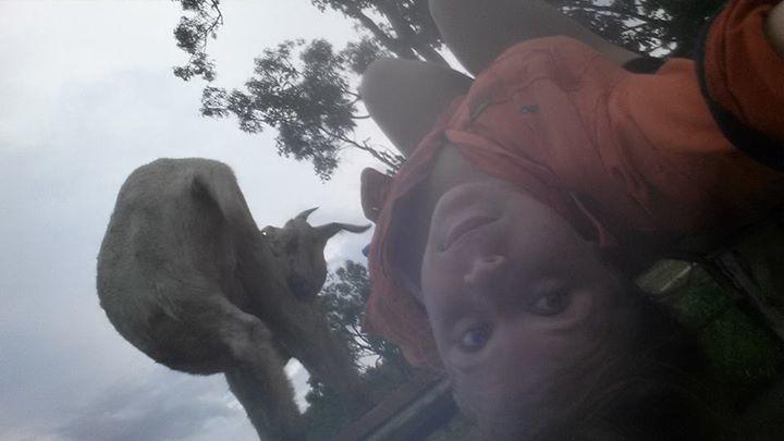 illuzone_Animal_Annoyed_Selfie (15)