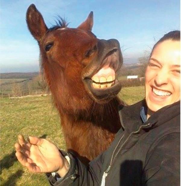 illuzone_Animal_Annoyed_Selfie (22)