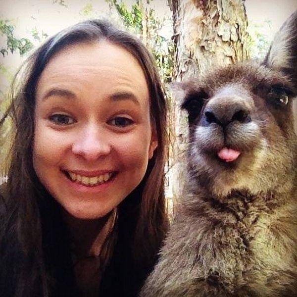 illuzone_Animal_Annoyed_Selfie (4)
