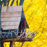 most beautiful tree houses